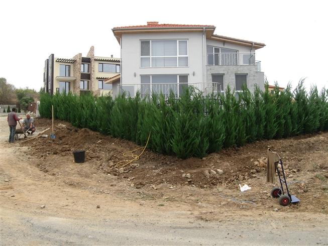 Изграждане на ограда (вечнозелена) – в.з.Буджака, гр. Созопол