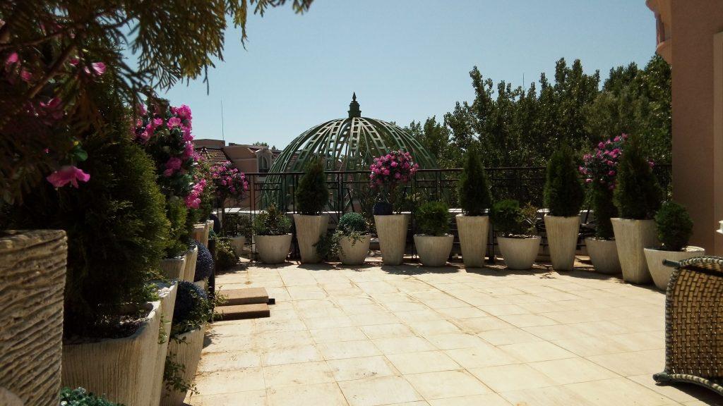 покривна-градина-1