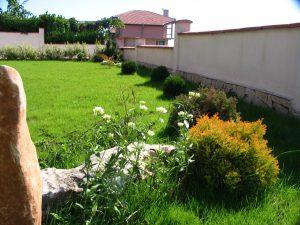 Дворна градина - 2006
